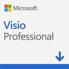 Visio Professional 2021 - D87-07606